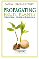 Propagating fruit plants