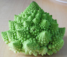 Fractal cauliflower